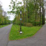 Аллея с семейными деревьями в Нордкирхене