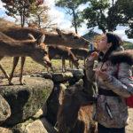 Нара - древняя столица Японии