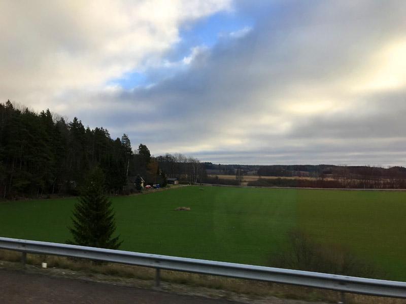 Швеция и зимой зеленая